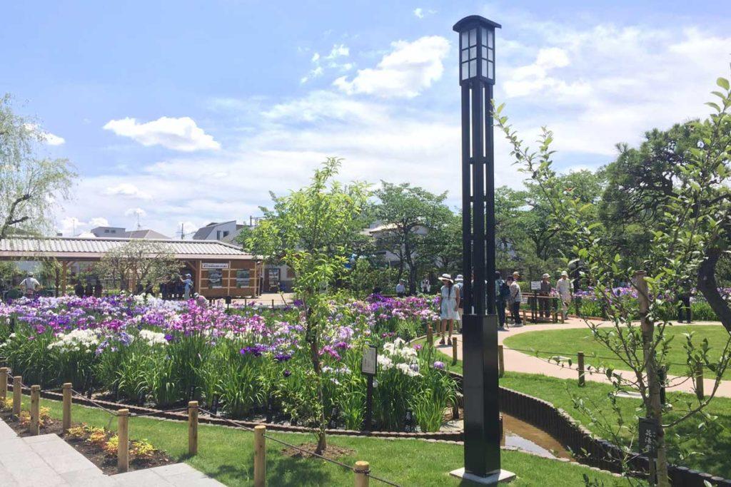 葛飾区 堀切菖蒲園 和風照明灯
